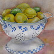 Still Life With Lemons Poster