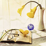 Still Life - Yellow Calla Lilies Poster