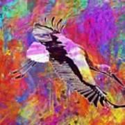 Stork Fly Elegant Feather Bird  Poster