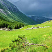 Storm Approaching Over Beautiful Green Field In Norway Poster