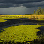 Storm Light At Patten Lake #2 Poster