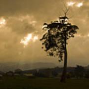 Storm Over Wilmot Poster