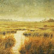 Stormy Marsh Poster
