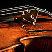 Stradivarius Poster