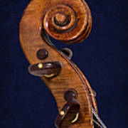 Stradivarius Scroll Poster