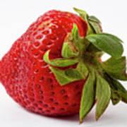 Strawberry Macro Poster