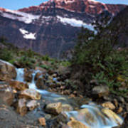 Stream And Mt. Edith Cavell At Sunset Poster