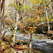 Stream In An Autumn Woods Poster