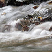 Stream Nature Spring Scene Poster