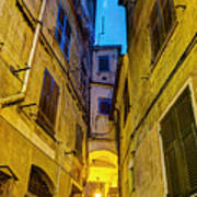 Street In Vernazza Poster