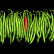 Stringbeans And Chilli Poster