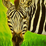 Stripes In Africa Poster
