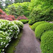 Stroling Garden Path In Japanese Garden Poster