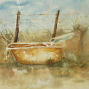 Study Of A Watering Tub Poster