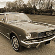 Stunning '66 Mustang In Sepia Poster