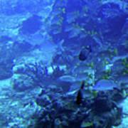 Submarine Underwater View Poster