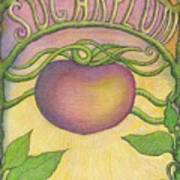 Sugarplum #4 Poster