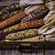 Suitcase Full Of Indian Corn Poster