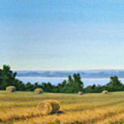Summer At Cayuga Lake Poster
