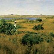 Summer At Shinnecock Hills Poster by William Merritt Chase