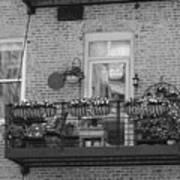 Summer Balcony In B W Poster
