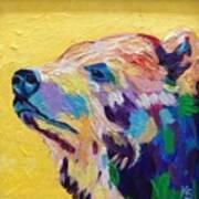 Summer Bear Poster