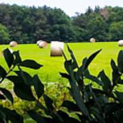 Summer Hay Poster