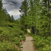 Summer Hike And Storm Clouds Poster