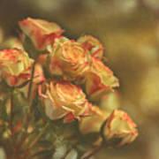 Summer Roses #2 Poster