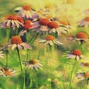 Summer Serenity Poster