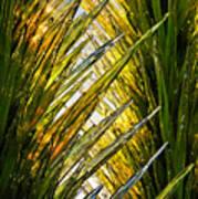 Sun Light Glass Poster