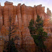 Sun Rising In Bryce Canyon Poster