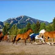 Sun Valley Stables Poster