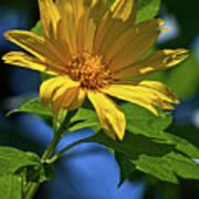 Sun Yellow Poster