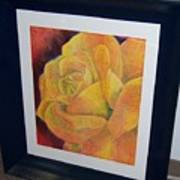 Sunburst Rose Poster
