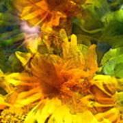 Sunflower 6 Poster