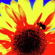 Sunflower Abstract Poster