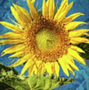Sunflower Art Poster