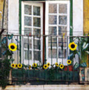 Sunflower Balcony Poster