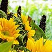 Sunflower Bouquet 2 Poster