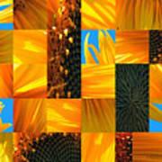 Sunflower Cut-up Poster