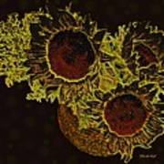 Sunflower Decor 10 Poster