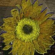 Sunflower Dreaming Poster