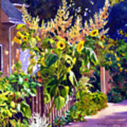 Sunflower Garden Poster