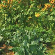 sunflower No.5 Poster