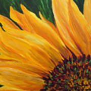 Sunflower Oil Painting Poster
