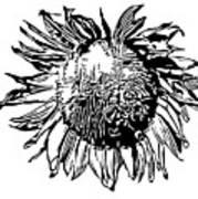 Sunflower Silhouette Poster