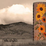 Sunflower Silo In Boulder County Colorado Sepia Color Print Poster