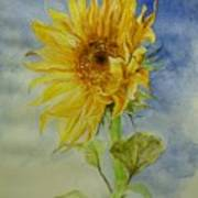 Sunflower Tribute To Van Gogh Poster