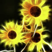 Sunflowers-4955-fractal Poster
